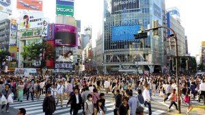 東京は将来に渡って圧倒的に賃貸需要が高い